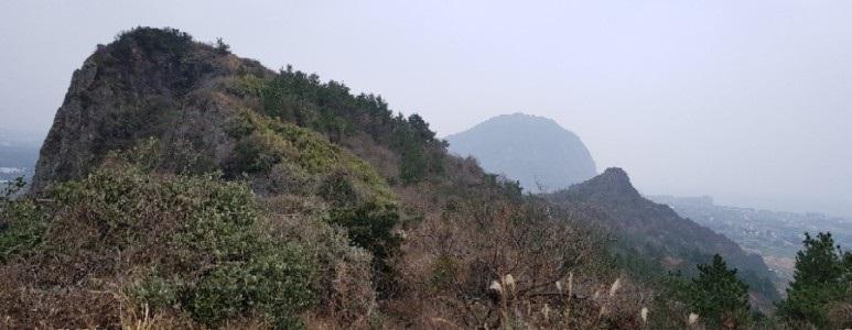 서귀포 대정읍 바굼지오름(단산) 전 코스를 걷다